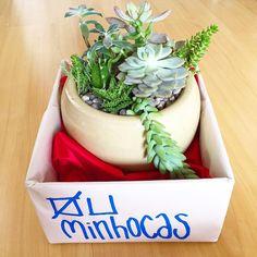 Já estamos a postos para a entrega de mais uma compra via #elo7br. Quer também? http://ift.tt/1XaJLOs  #oitominhocas #suculentas #suculovers #decoração #plantinhas #plantinhasemcasa #ceramicas #compraonline