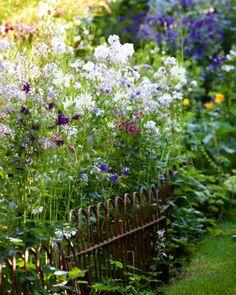 Gardens Illustrated - Roundhill Cottage Sussex, Rachel Warne