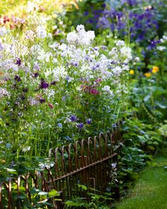 Gardens Illustrated - Roundhill Cottage Sussex, Rachel Warne