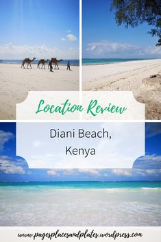It's voted Africa's best beach for a reason. Discover why Diani Beach needs to be your next destination by the sea! Best Places To Travel, Cool Places To Visit, Places To Go, Amazing Destinations, Travel Destinations, Travel Tips, Diani Beach Kenya, Family Holiday Destinations, Ways To Stay Healthy