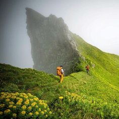 The Beautiful place #Hornstrandir, #Iceland #amazingthingsbyus
