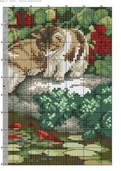 Kitten_Reflections-002.jpg (2066×2924)