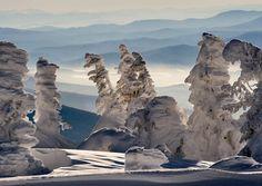 В окружении голубых Сибирских далей здесь уютно расположились творения живой природы, ветра и снега. Некоторые персон