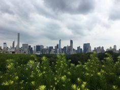 El contraste de los dos paisajes, el rural  y el urbano, sumados la saturación que diferencia al uno del otro, generan una escena muy pictórica. Lo verde del jardín contrastado con lo gris de la urbanización.