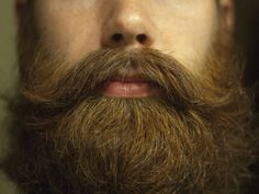 Beards & Mustaches are awesome.