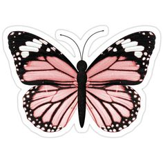 Blue Butterfly Discover Light Pink Butterfly Sticker by EmmaGSheehan Light Pink Butterfly Sticker Tumblr Stickers, Cool Stickers, Preppy Stickers, Printable Stickers, Laptop Stickers, Butterfly Drawing, Butterfly Painting, Butterfly Wallpaper, Pink Butterfly