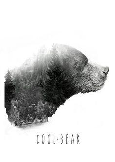 Illustration / Fear the bear