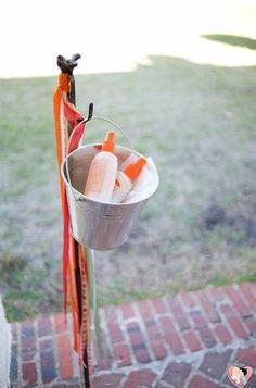Em um casamento no campo não dá para evitar os mosquitos e pernilongos. Por isso deixe repelentes nos toaletes ou na entrada da cerimônia, para os convidados usarem quando precisar.
