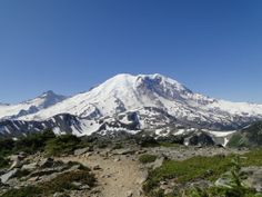 Mt Rainier has no bad angles! Whether you're a professional photographer, or an amateur with a cellphone, if the mountain's out, it's sure to be stunning! Mt Rainier National Park, Professional Photographer, Mount Rainier, Angles, Washington, National Parks, Mountains, Nature, Travel