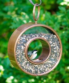 """Fly Through Bird Feeder - Always easy to know-when-to-fill feeders. Unique Venetian bronze finished steel construction. What a smart way to wile away your bird watching day. 15""""H, 11""""W. Holds 5+ lbs. of seed."""