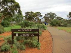 Kalgoorlie Arboretum provides some excellent interpretive walk trails enabling you to explore the regions native flora. Take a leisurely walk through the trees allowing time to stop and identify the various species, whilst reading the informative plaques. Enabling, Amazing Destinations, Western Australia, Wildflowers, Bouldering, Us Travel, Trail, Flora, Sidewalk