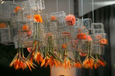 Hanging Centerpiece of Birds of Paradise by Bold American Events