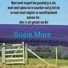 Amen Here. Goeie more geliefdes. Good Morning Picture, Morning Pictures, Good Morning Images, Morning Blessings, Good Morning Wishes, Morning Inspirational Quotes, Motivational Quotes, Evening Greetings, Afrikaanse Quotes