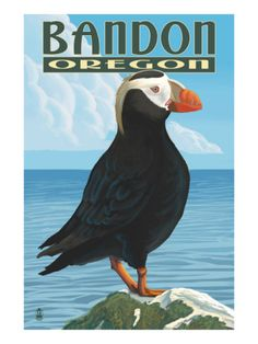 Bandon, Oregon - Puffin Art Print