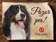Cedulka Bernský salašnický pes - Pozor pes zákaz Bernese Mountain, Mountain Dogs, Shopping Bag, Animals, Animales, Animaux, Bernese Dog, Animal, Animais