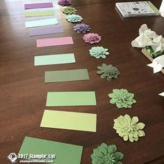 THE STAMPIN SCOOP SHOW – Episode 29 February 15, 2017 We sure had fun sharing the Stampin Up Succulent Garden Suite on today's episode of the Stampin Scoop Show. We started out with some audio technical difficulties (no sound), which thankfully we were able to fix