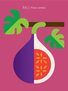 Fruit by Christopher Dina, via Behance
