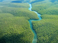 The Amazon, Ecuador. The Amazon rainforest is the last green frontier on earth. It is estimated that 20 percent of the earth's oxygen is produced in the area. It encompasses 1.7 billion acres and runs across nine South American countries. It also holds the largest collection