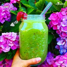 Kiwi Juice! 8 kiwis and 1 cup of strawberries blended with 3 cups of coconut water! So good!