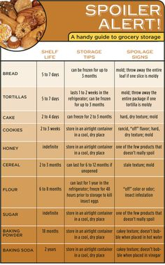 Food Storage Guide Infographic
