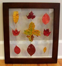 Ten June: DIY fall leaf art