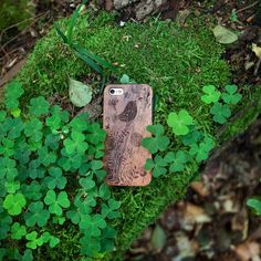 #by_kwmobile // Oh schau... ein scheues Smartphonecase im Wald! Wenn wir ganz ruhig sind können wir es vielleicht sogar einsammeln. Wer es einfacher möchte zum Holzcase geht es hier: http://ift.tt/2bVWWDX #kwmobile #holz #wald #pilzesammeln #handyhülle #natur #nature #vogel #waldspaziergang