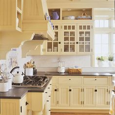 Cabinets have lots of character with open cabinets on top and I can't believe I'm say this, but the bead board on bottom does add some texture