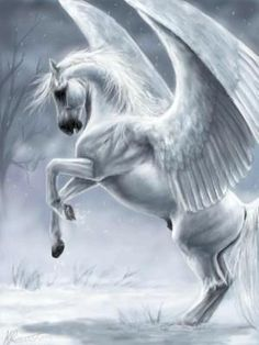A white pegasus... Though considered Roman, these creatures were from Greek mythology. Sometimes they had wings of feathers, and other times wings of skin or angels.