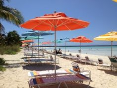 Serenity Bay - the adult beach only Some of My Favorite Things to Do on Disney's Private Island #DisneyCruise #CastawayCay