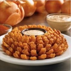 FREE Bloomin' Onion At Outback Steakhouse & $5 Off Dinner & Buy One Get One FREE Lunch!
