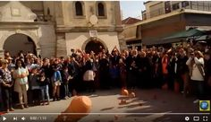 Πρέβεζα : Βίντεο από τα Μπότια στην Πρέβεζα