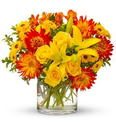 Summer Samba!  Bakman Floral Design is a family owned  operated florist in South Lyon, MI committed to offering the finest floral arrangements  gifts, backed by service that is friendly  prompt! Call (248) 437-4168 or visit www.southlyonflorist.com for more info!