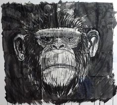 Marcelo Dalbosco - My work
