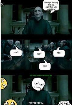 Wtf Funny, Funny Memes, Hilarious, Jokes, Harry Potter Mems, Harry Potter Fan Art, Funny Lyrics, Really Funny Pictures, Pokemon