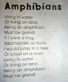 Teach Junkie: 25 Easy Frog and Toad Ideas and Activities - Frog (Amphibian) Poem