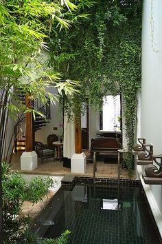 Backyard OR Courtyard Inspiration based on The Siam Hotel in… - Garten Pool ideen Outdoor Rooms, Outdoor Gardens, Indoor Outdoor, Outdoor Living, Rooftop Gardens, Indoor Plants, Swimming Pool Designs, Swimming Pools, Indoor Swimming