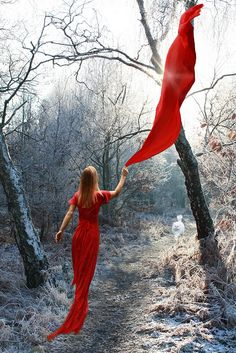 Seduced by red... by Eliza Frydrych, via Flickr