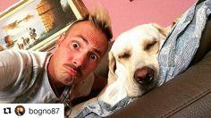 Due nuovi amici su BauSocial!  #Repost @bogno87 with @repostapp  Bauuuu! #bausocial #bau #maxizoo #labrador #labradorretriever #dog #dogstagram #dogs #comic #artist #buffo #bogno #grandefratello #socialmediaset #tiffany #bognoetiffany #puppy #puppydog #love #giorno #nanna #relax #selfie_mydog #selfiedog #instagood #belli #cane #love