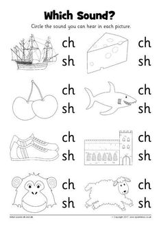 Which Sound? Worksheets – ch and sh (SB12216) - SparkleBox
