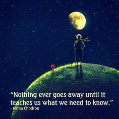 "Le Petite Prince - ""Nothing ever goes away until it teaches us what we need to know."""