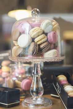 #macarons on cake stand under a glass cloche   Georgianna Lane