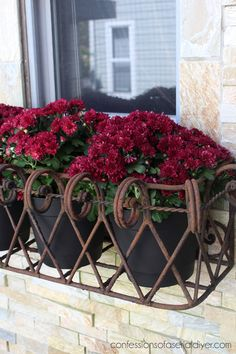 Fill window boxes with smaller pots instead.