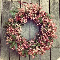 Australian Christmas Bush wreath by Flora Folk. If only my Xmas bush was still flowering at Xmas! Aussie Christmas, Australian Christmas, Summer Christmas, Christmas Is Coming, Christmas Love, All Things Christmas, Christmas Wreaths, Christmas Decorations Australian, Xmas Decorations