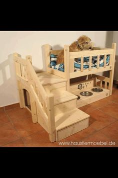 Yes this is so for my dog!