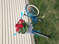 My turquoise Schwinn bike