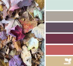 fallen hues | design seeds | Bloglovin'