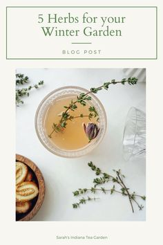 The winter can become so dark and dreary. Growing herbs can add freshness, and a bit of green to your home even on the coldest of days. This post covers my 5 favorite herbs to grow during the winter. Indoor herb gardening | Herb gardening in the winter | Herb gardening indoors | Herbs to grow in the winter | Herbs to grow on a windowsill | Container herb gardening | Growing herbs in containers | Growing chives | Growing parsley | Growing basil | Growing mint | Growing cilantro