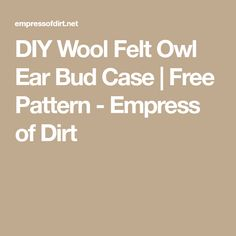 DIY Wool Felt Owl Ear Bud Case | Free Pattern - Empress of Dirt