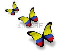 Tres mariposas de bandera colombiana, aislados en blanco photo