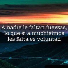 Si Pierdes El Camino, Estas Citas Te Ayudarán   Espiritualidad Ads, Writing, Reading, Quotes, Posters, Qoutes Of Life, Thoughts, Positive Quotes, Quotations
